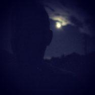 Moonlight-WalkandTalk-EpsteinFreeZone-Bob Davis Podcast 854