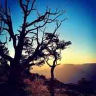 Grand-Canyon-Southwest-Masterpeice-Bob Davis Podcast 996